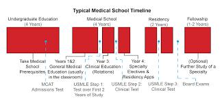 Medical School Timeline Med School Timeline Science Medicine