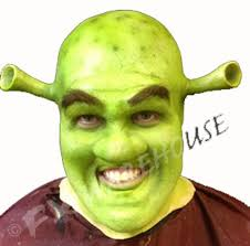 out of stock shrek face foam latex prosthetic 2nd imperfect