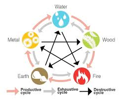Feng shui home elements plants Wood Feng Shui Five Elements And Their Cycles Of Production Exhaustion And Destruction Pinterest Why Arent All Feng Shui Masters Making Millions Illustration Of