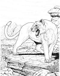 Free Panther Coloring Pages