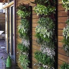 outdoor herb garden. Vertical Garden Outdoor Herb