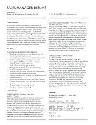 Sample Project Manager Resume Objective Sales Program Manager Resume Project Manager Resume Objective 88