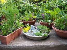 Container Herb Garden Plans Ideas  Home InspirationsContainer Herb Garden Plans