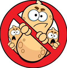 Nut allergy cured in 80% of children participating in probiotic ...