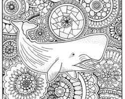Small Picture Whale coloring Etsy