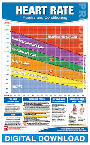 Digital Heart Rate Chart Productive Fitness