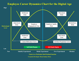 An Overview Of The Employee Career Dynamics In The Digital Age