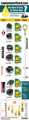 Briggs And Stratton Engine Oil Capacity Chart Can You Use Car Oil In A Lawn Mower Yes But