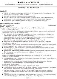 Resume Summary Statement Examples Free Resume Templates
