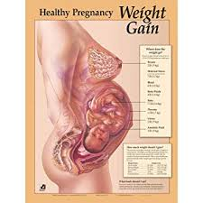 Pregnancy Weight Gain Chart Amazon Com Healthy Pregnancy Weight Gain Chart Health