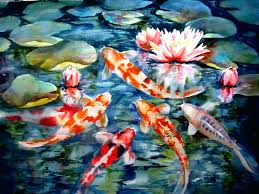 koi fish wallpaper for walls wallpapers cave .