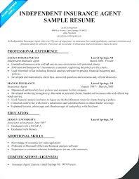 Insurance Agent Job Description For Resume Mesmerizing Insurance Professional Resume Best Resume Template Whizzme