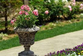 Small Picture 11 Most Essential Container Garden Design Tips Designing a