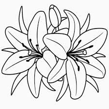 Fiore Disegno Bianco E Nero