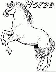 Small Picture 19 best Horse Coloring Pages images on Pinterest Horse coloring