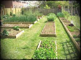 vegetable garden layout ideas beginners top raised bed gardening for idea cute full version uk