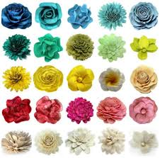 Different Types Of Flowers Chart Pictures Of Flowers