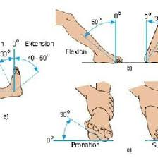 Normal Values For Ankle Movements A B Flexion