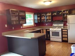 can i paint my kitchen cabinetsCan I Paint My Kitchen Cabinets With A Brush  Home Design Ideas