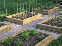Small Picture Small Vegetable Garden Design Ideas erikhanseninfo