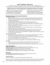Counseling Resume Extraordinary Resume Unique Resume Template School Student Resume Template