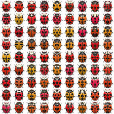 Ladybug Sheet A Sheet Of Ladybug Illustrations That Tile Seamlessly As A Pattern