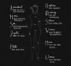 Alchemy Birth Chart Anatomical Representation Of The Zodiac Birth Chart My