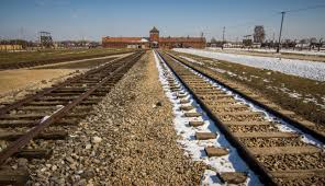 concentration camps essay auschwitz concentration camp unknown  auschwitz and birkenau concentration camp photo essay minority nomad auschwitz birkenau train yard the game of
