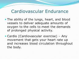 cardiovascular fitness essay cardiovascular fitness essay examples kibin