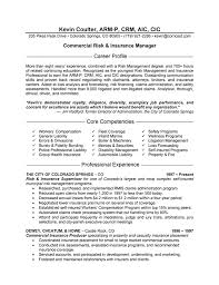 Resume Format For Experienced In Insurance Industry
