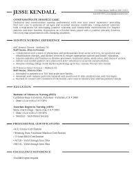 Professional Nursing Resume Examples Sarahepps Com