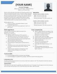 Sales Manager Resume Examples New Insurance Sales Resume Sample 2015