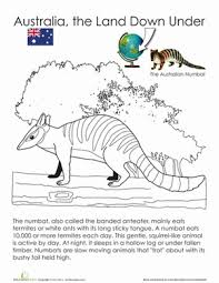 Small Picture Animals of Australia Coloring Pages Educationcom