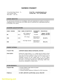 Inspirational Resume Template Doc Download Best Templates