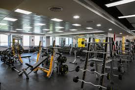 Gold Gym Workout Chart Business Village Deira Mixed Gym