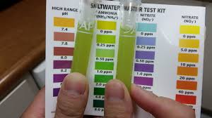 Saltwater Test Kit Chart Api Master Kit What Color Do You See Beginners
