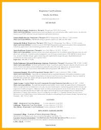Resume Set Up Interesting Training Specialist Sample Resume Magnificent Special Education
