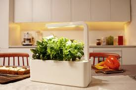 Indoor Kitchen Herb Garden Kit Indoor Herb Garden Kit Planter Designs Ideas