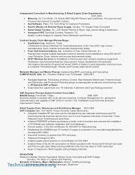Insurance Manager Resume Sample Resume For Sales Executive In Real Estate Beautiful Stock