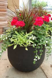 interior inspiring patio flower pots ideas pot plants outside planters plans container garden images of potted