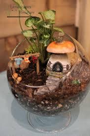 Indoor Rock Garden Best 25 Indoor Fairy Gardens Ideas On Pinterest Diy Fairy House