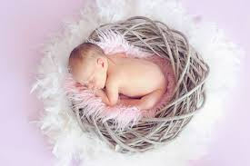 10 000 Free Cute Baby Images In Hd Pixabay