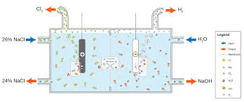 basic membrane cell used in the electrolysis of brine at the anode a chloride cl is oxidized to chlorine the ion selective membrane b allows the