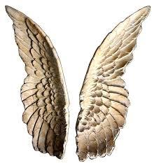 angel wing wall decor angel wings wall sculpture set of 2 angel wing wall decor uk