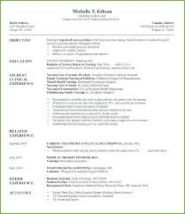 Nurse Educator Resume Health Educator Resume Thrifdecorblog Com