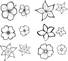 Tropical Flower Coloring Pages To Print Tropical Flower Coloring