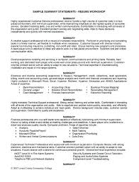 Resume Summary Examples For Customer Service Summary Example For