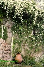 Oltre 20 migliori idee su cascata da giardino su pinterest