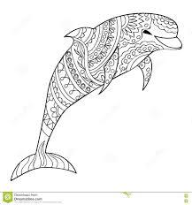 Delfino Illustrazione Vettoriale Illustrazione Di Animale 73299688