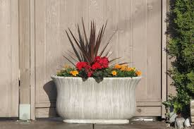 tips for decorating with large planters